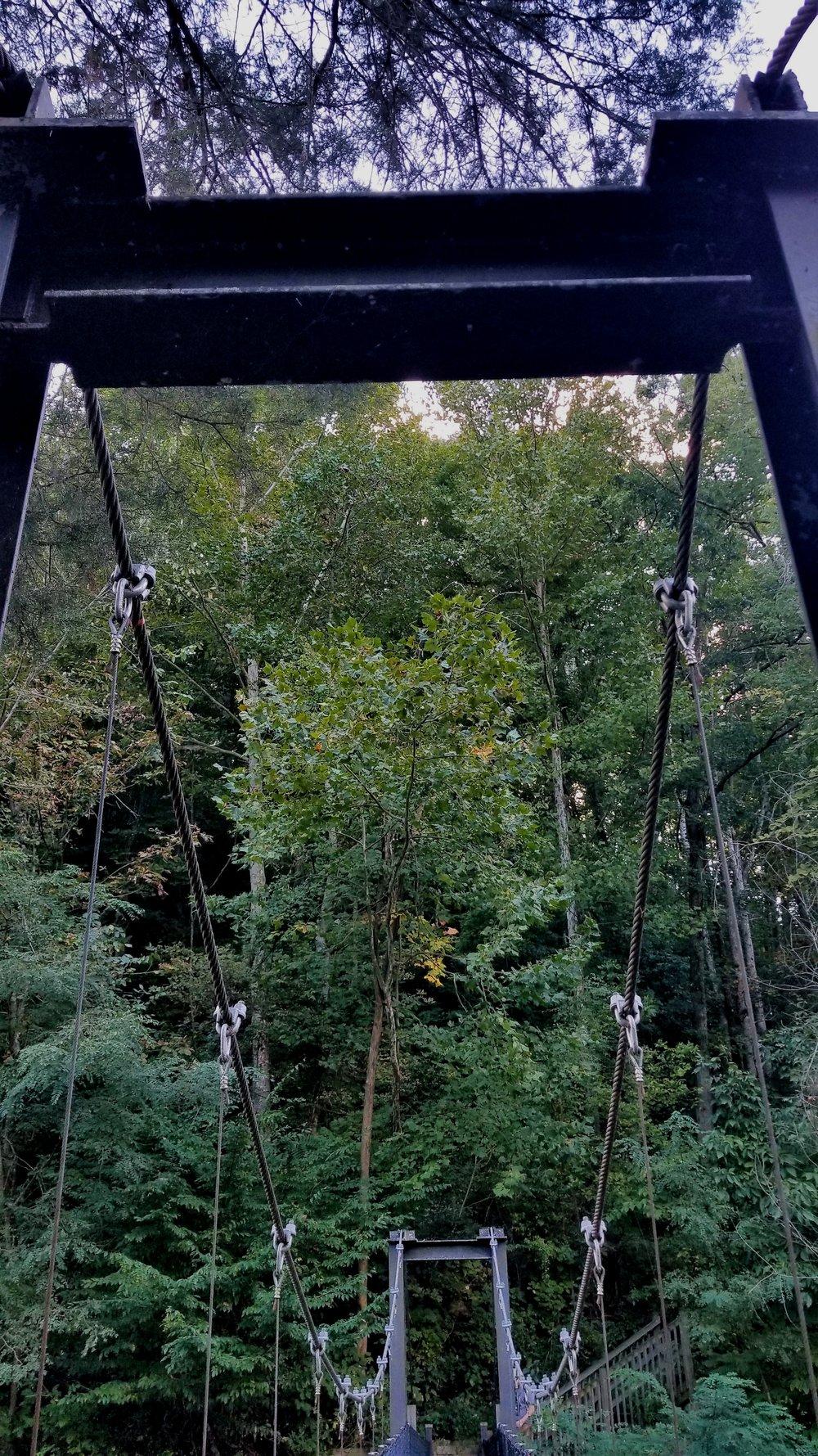 Swinging Bridge at Standing Stone State Park