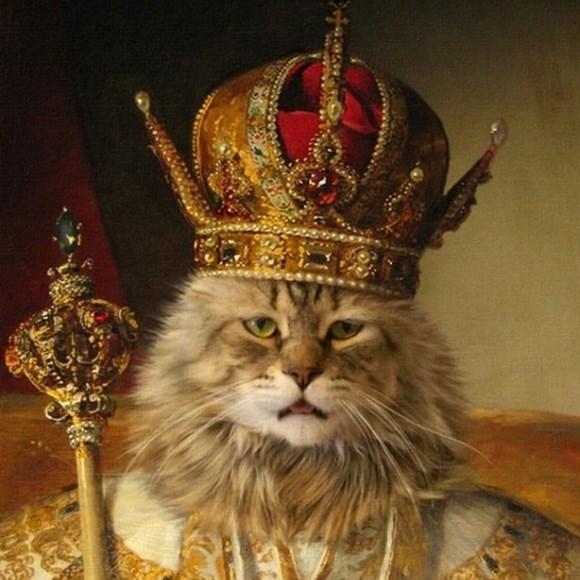 cat-king.jpg
