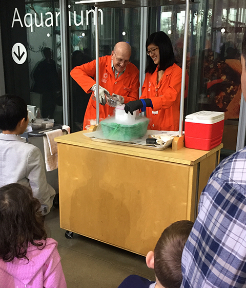 A crowd favorite, the comet demo allows us to show guests the composition of comet nuclei while having fun with dry ice. (Safely, of course!)