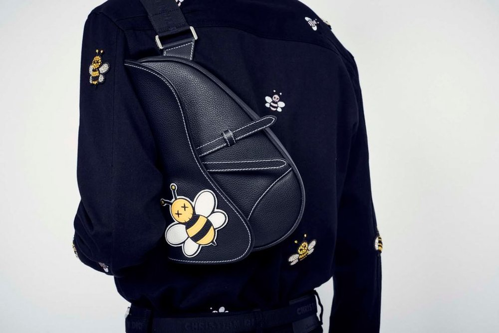 Dior x Kaws Saddle Bag