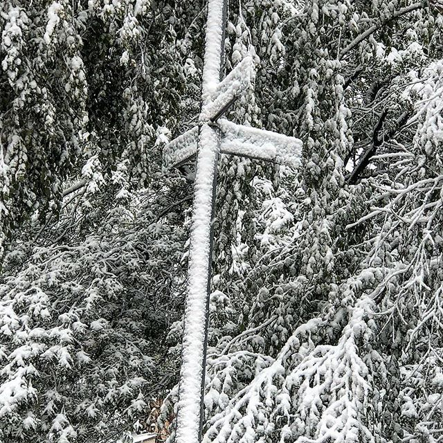 A little snow ❄️ presented certain challenges while out knocking today... like knowing what intersection I was at!