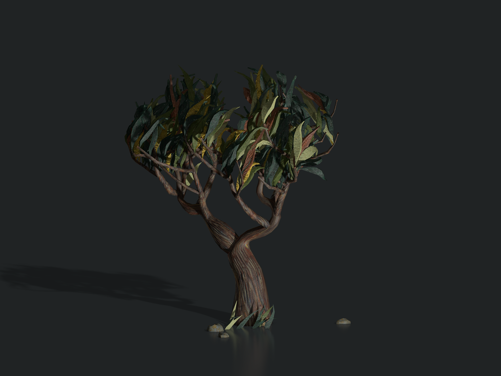 plants_saint_remy_tree1304.png