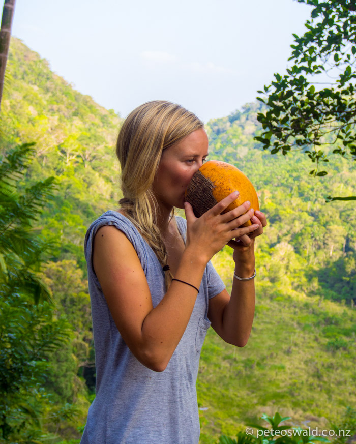 A fresh King Coconut at the top of the climb to the Kukuli Vihara Buddhist temple