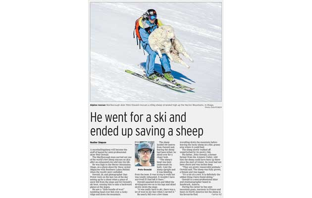 Southland Times Newspaper - Sheep Rescue