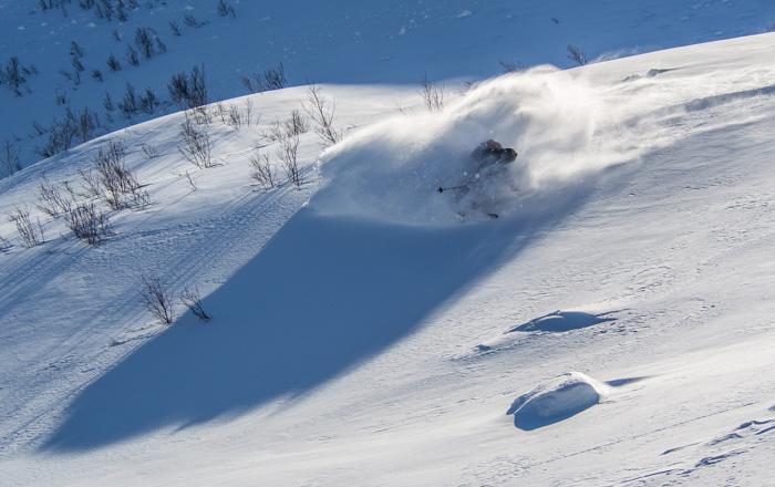 In Vesterålen you can ski both big lines and find fun playful tree-skiing. Skier: Tove Kockum, photo: Sophie Stevens