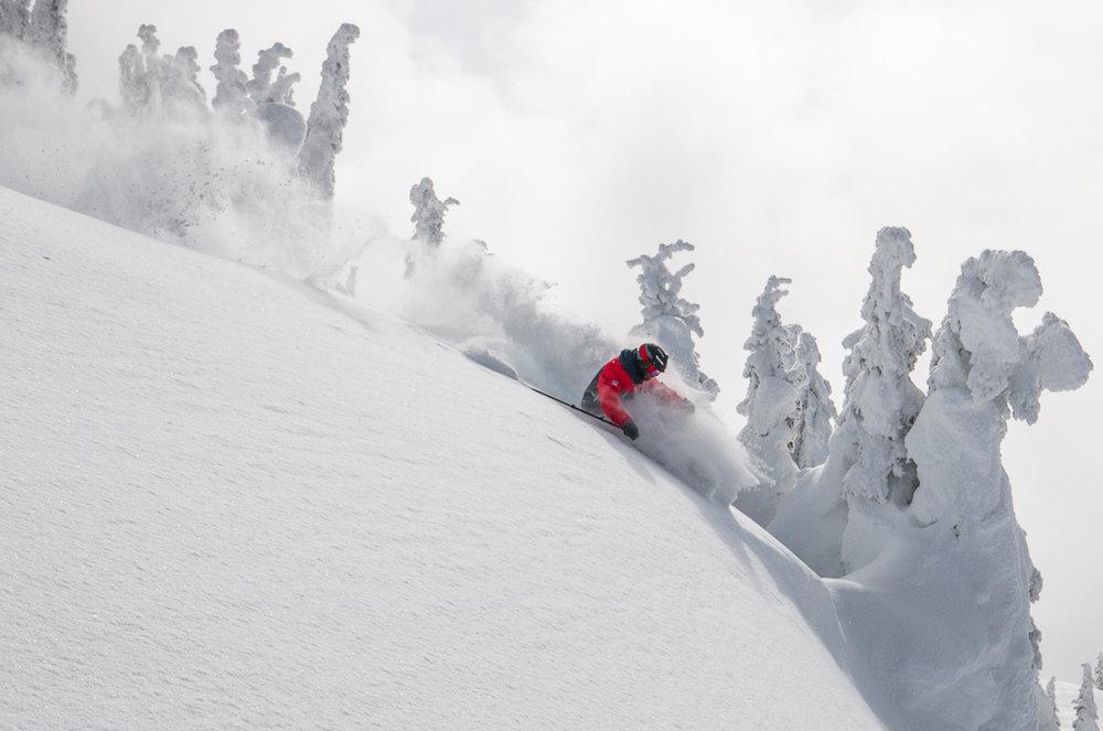 Pete shredding pow through the Snow Ghosts at Revelstoke, BC. Photo: Sophie Stevens