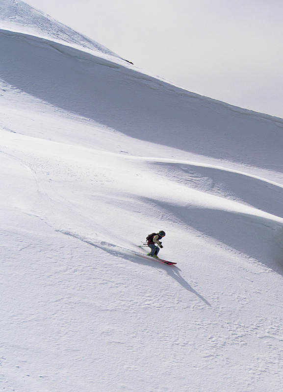Soph scoring some pristine spring corn. Photo: Pete Oswald