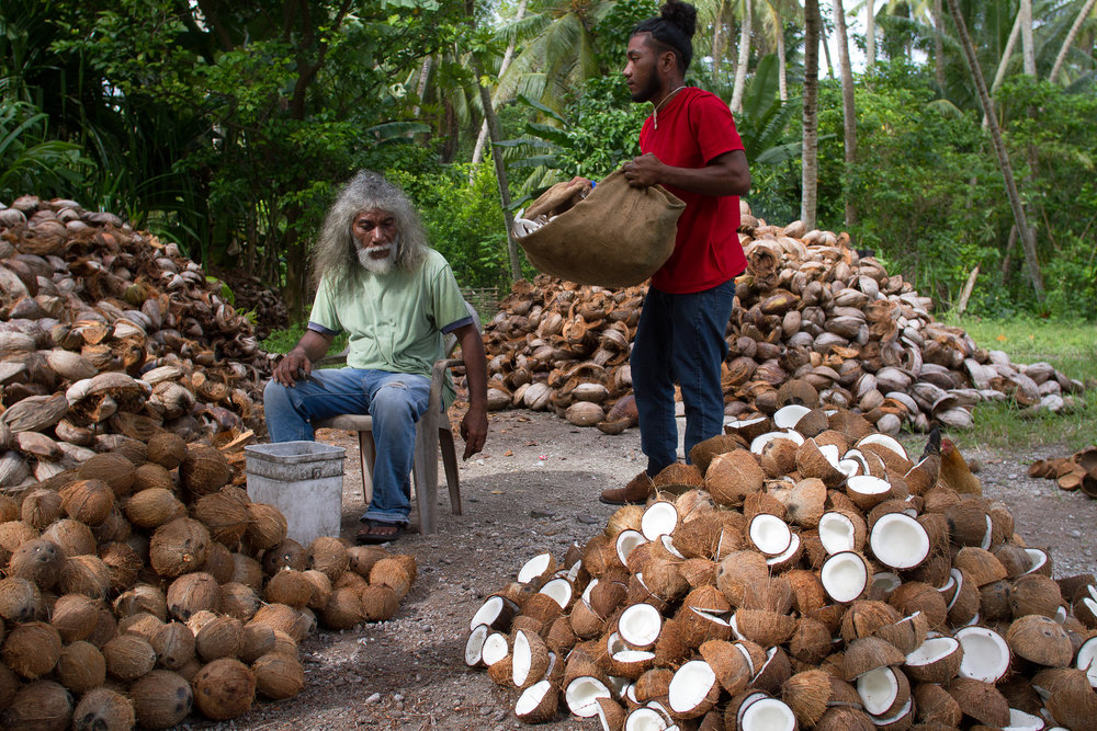 Harvesting copra, the dried meat of coconuts, is the only source of income for many of the people living in the outer islands like Arno. In the northern atolls especially, copra has been severely affected by drought and the 2014 harvest was significantly lower than normal.