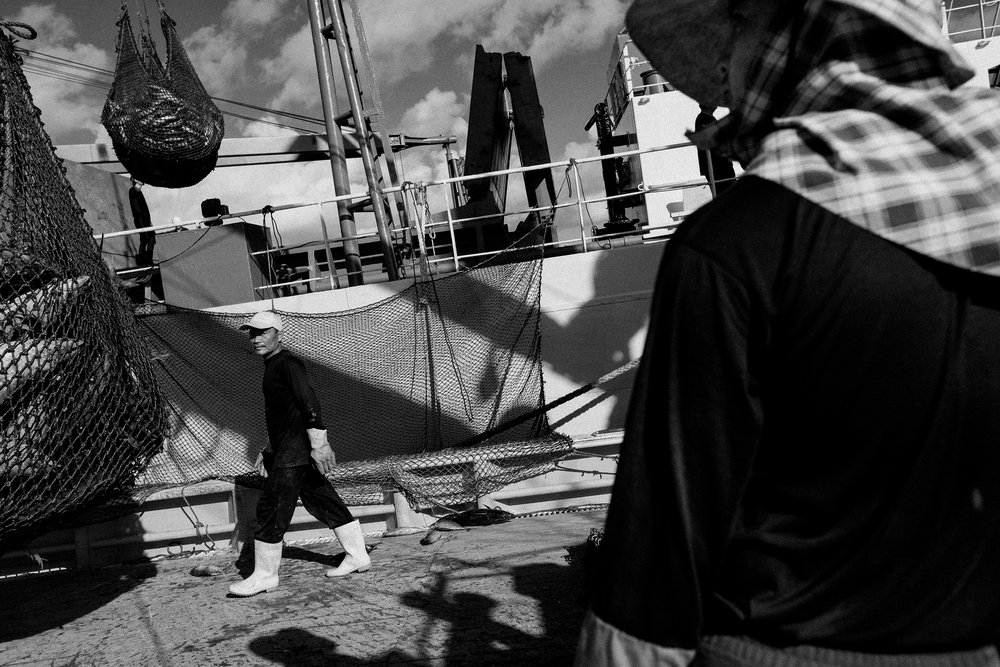 Under the watchful eye of the Filipino crew, skipjack is transferred onto larger 'mother ships', capable of storing thousands of tonnes of tuna in brine. Unlike other Pacific nations, Kiribati still allows this practice to occur in their waters, maximizing the fishing time for the boats, and the amount of tuna of caught.