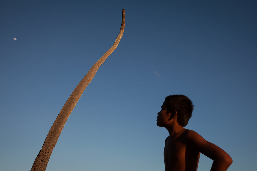 At sunset in South Tarawa, a boy looks across at a palm tree killed by the sea. In a few days, the moon will be full, bringing the highest tide in three months and the chance of another inundation by the sea. Flooding directly impacts the islands' meagre supply of fresh water making it undrinkable, and causes crops and other vegetation to die.
