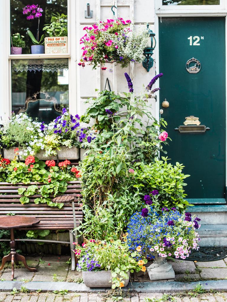 lilywanderlust-amsterdam-summer-gardens-1.jpg