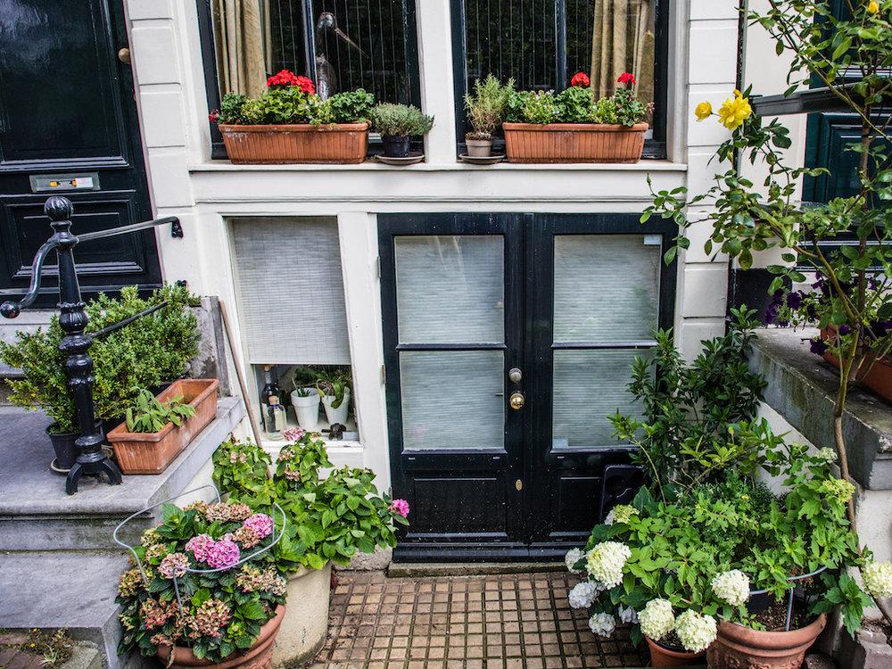 lilywanderlust-amsterdam-summer-gardens-3.jpg