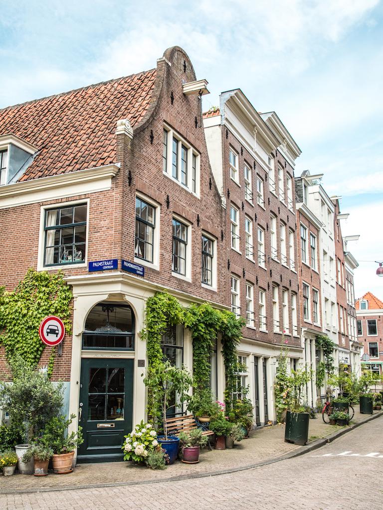 lilywanderlust-amsterdam-summer-gardens-8.jpg