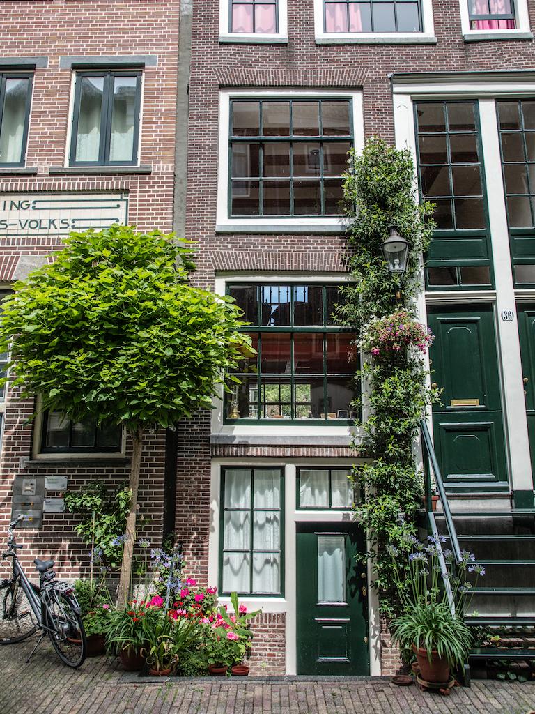 lilywanderlust-amsterdam-summer-gardens-6.jpg