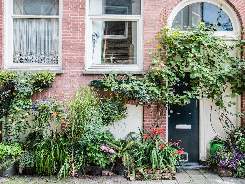 lilywanderlust-amsterdam-summer-gardens-4.jpg