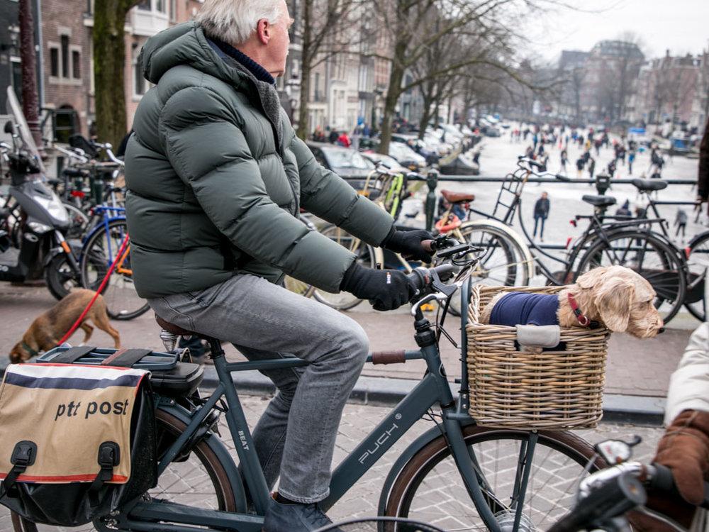 LilyWanderlust-Amsterdam-Frozen-Canals-41.jpg