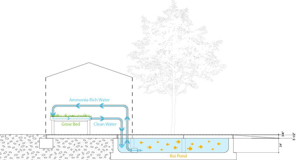 Aquaponics water flows