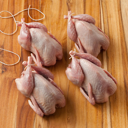 Fresh Quail for your most discerning guests