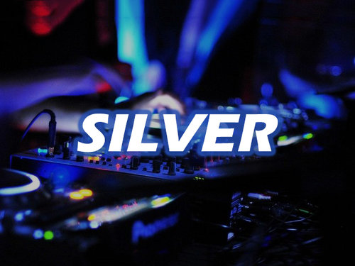 SILVER PACKAGE - 4 HOURS(1) DJ & (1) MC151 TO 200 GUESTADVANCED LIGHTING