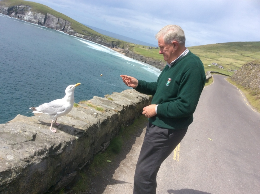 Tim feeding an expectant seagull.