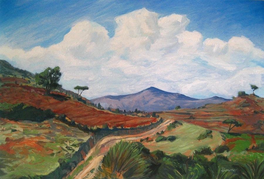 Road to San Bartolomé