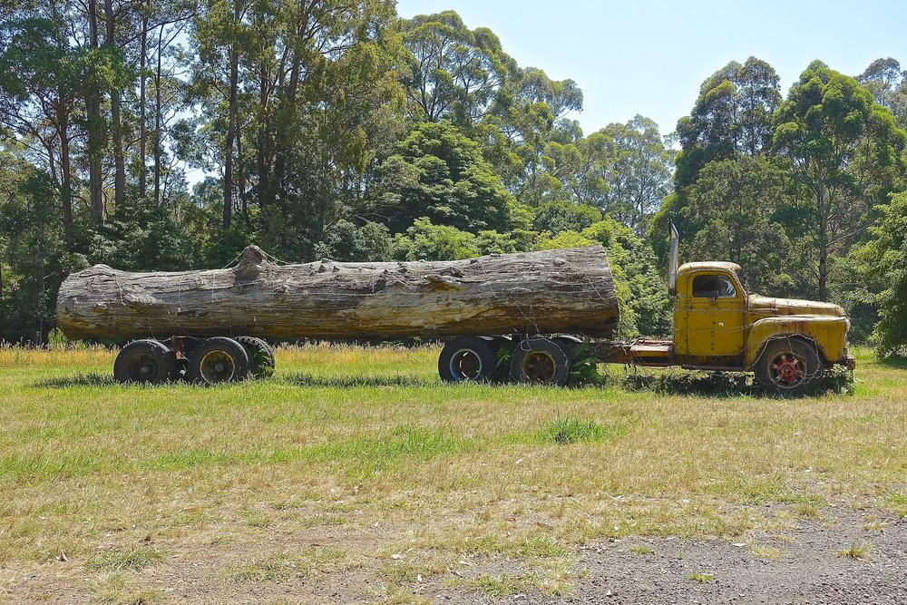 log-truck-557539_1920.jpg
