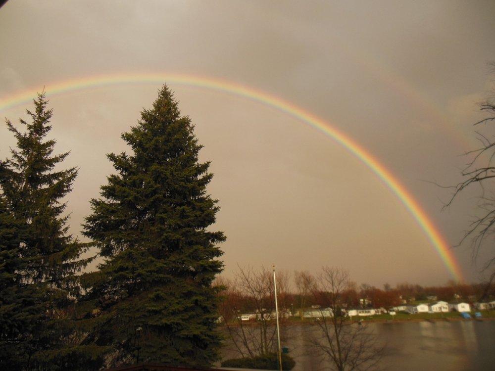 Bittersweet Rainbow