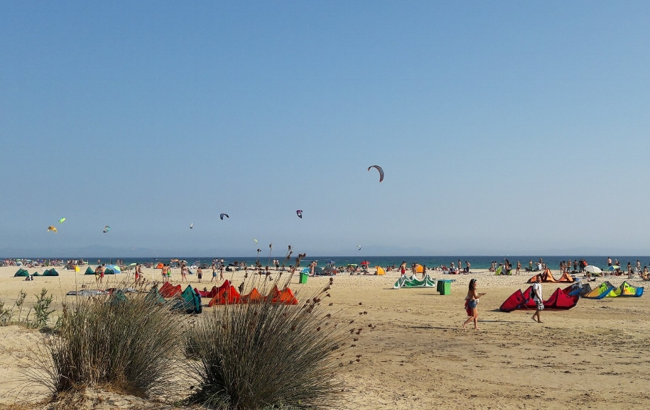Everywhere you look you can see kiteboarder's parachutes and beach umbrellas!