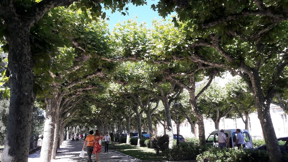Take the city in slowly, sauntering along its many parks and walkways ( Paseo de la Isla  shown here).