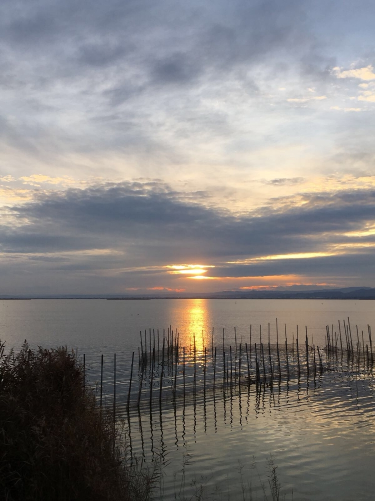 The natural parks in Spain, like Albufera, are amazing.