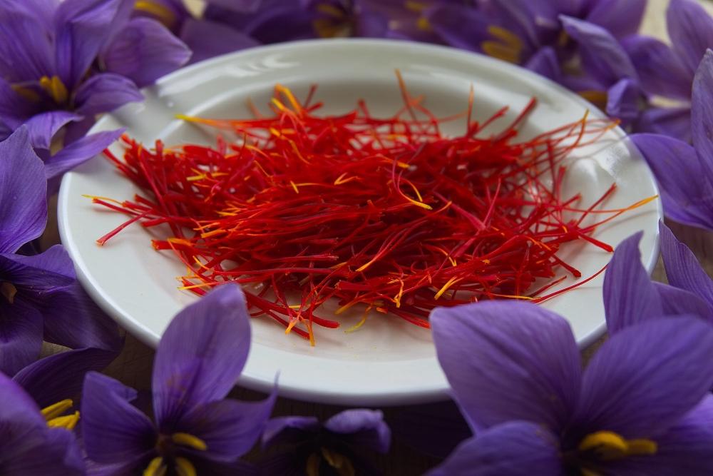 Saffron the spice with saffron the flower.