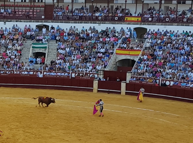 There is a lot of risk involved for the  torrero.
