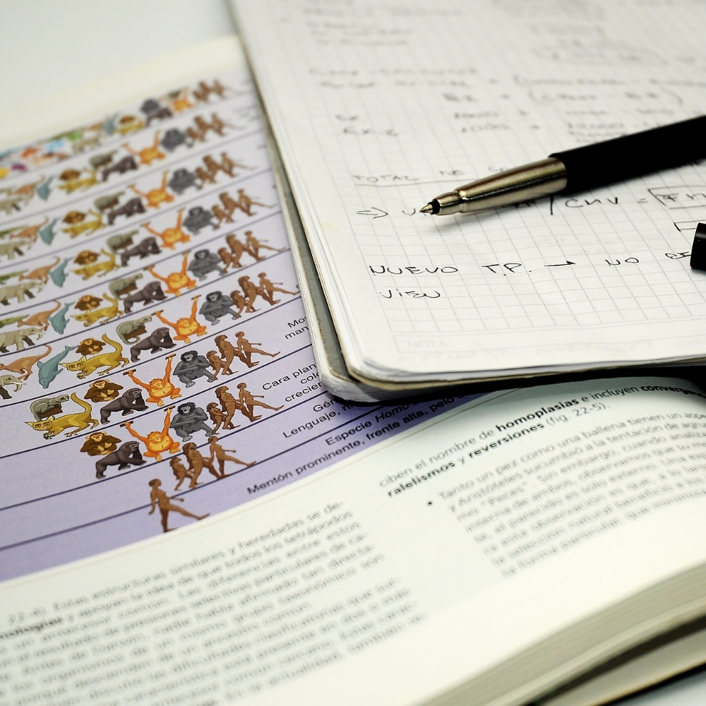 Make sure you prepare good notes in order to prepare a good presentation