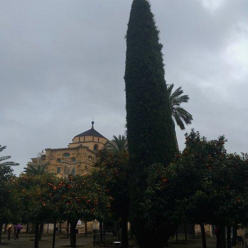 e9d7e5ca61cd ... Traveling with a backpack or suitcase · Soñando Sunday  Catedral de  Córdoba