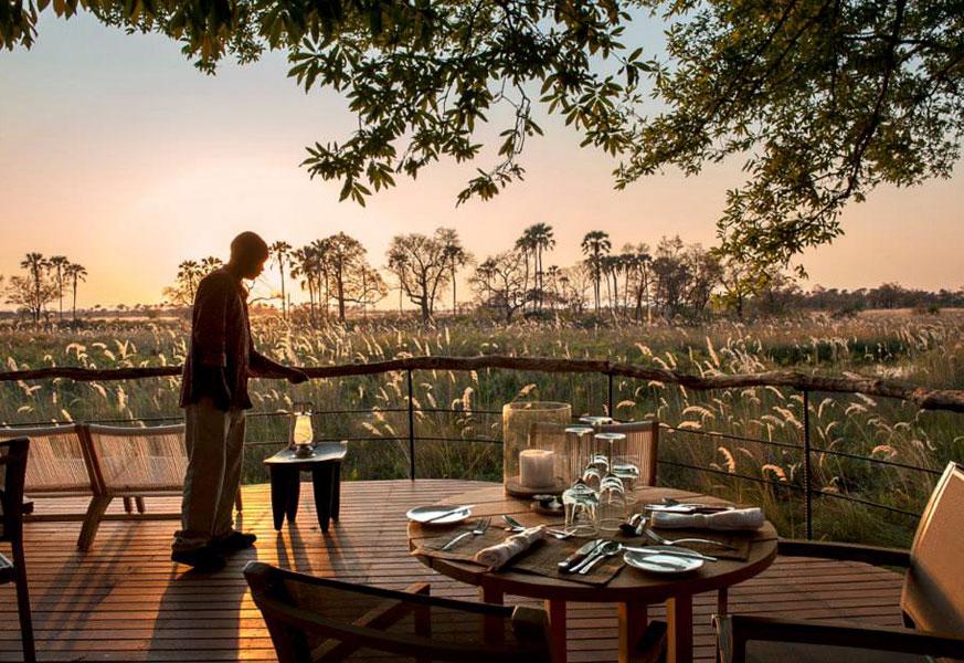 dinner_safari_africa.jpg
