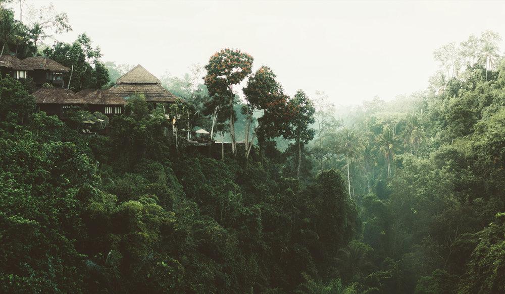 Luxury Resort in Borneo
