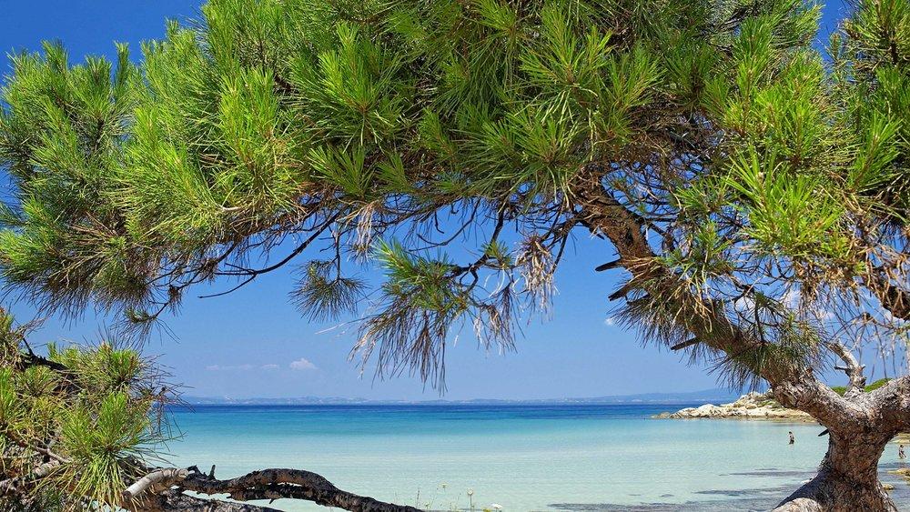 Greece_Halkidiki_004.jpeg