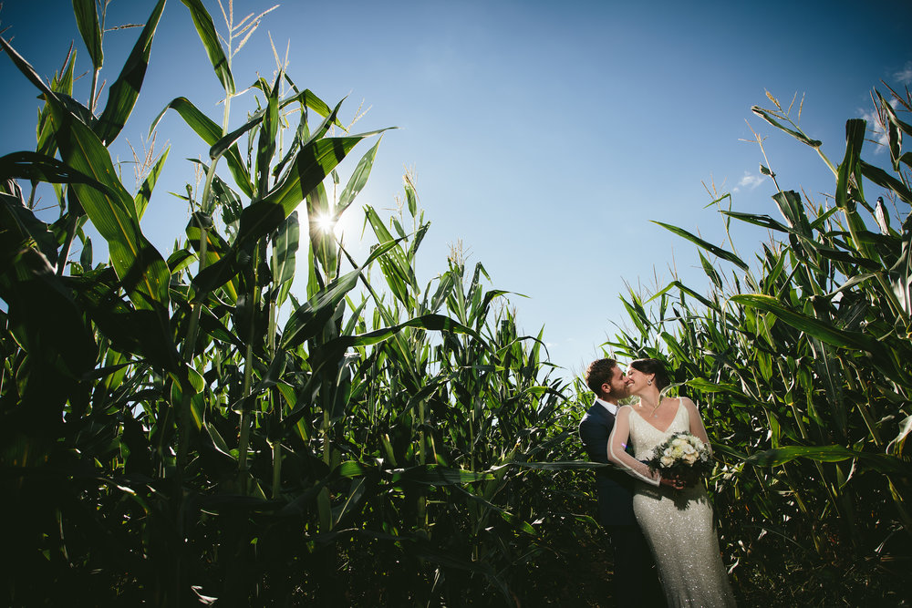 hudson-valley-farm-weddings-pioneer-farm-weddings-warwick-ny-bride-and-groom-kiss-in-cornfield.jpg
