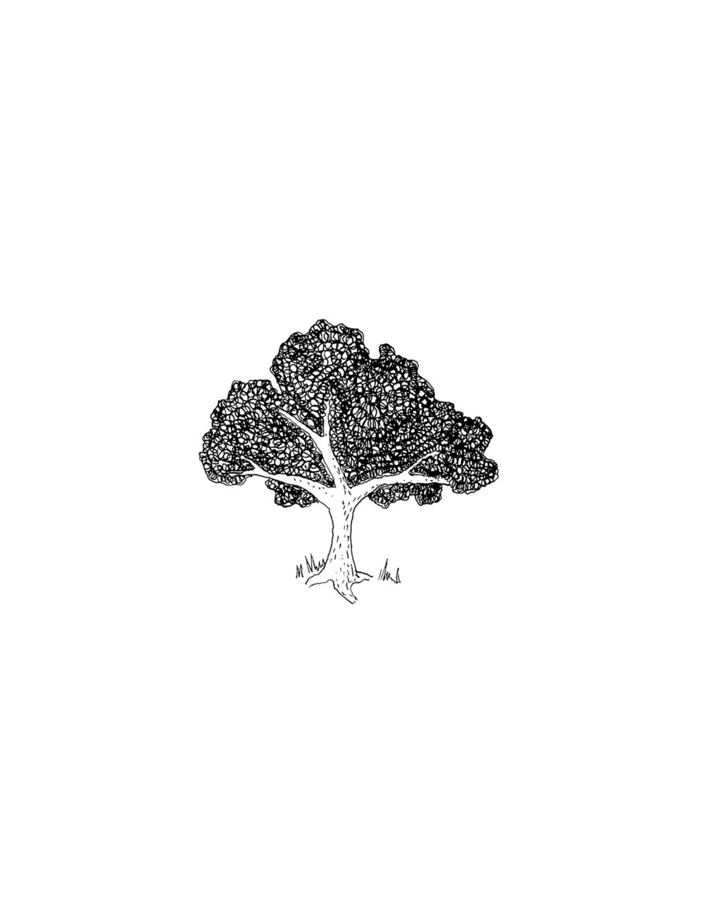 hudson-valley-farm-weddings-pioneer-farm-weddings-warwick-ny-Tree.jpg