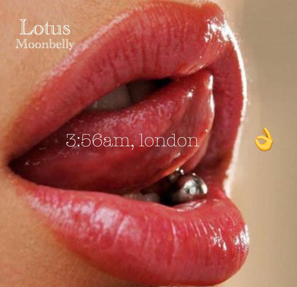 Lotus moonbelly img0935g izmirmasajfo