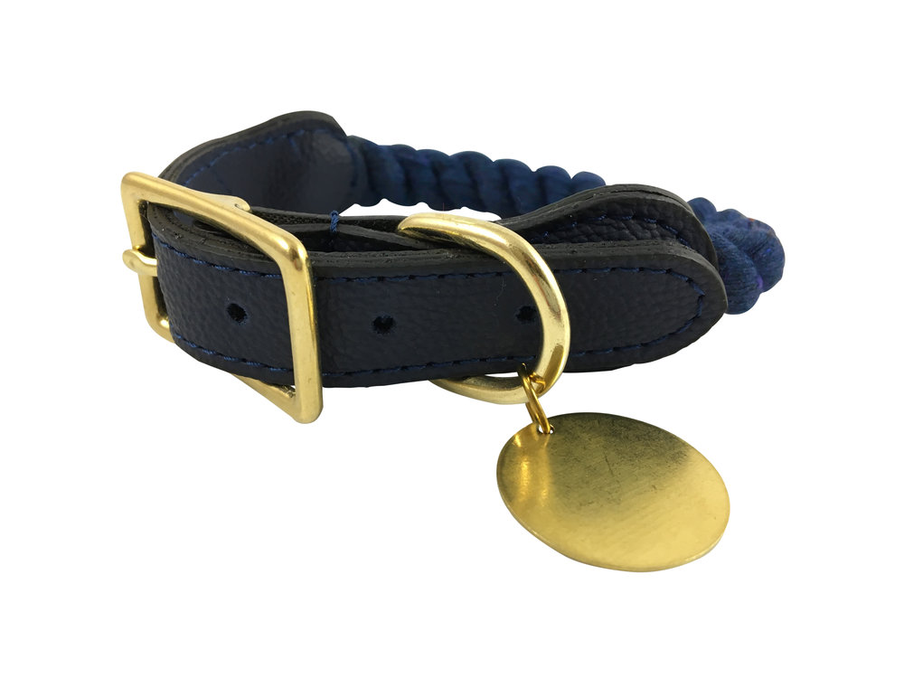 dog_collar_right_blue.jpg
