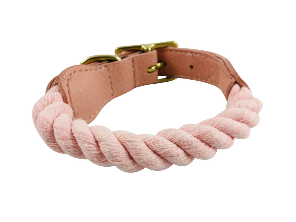 dog_collar_back_pink.jpg