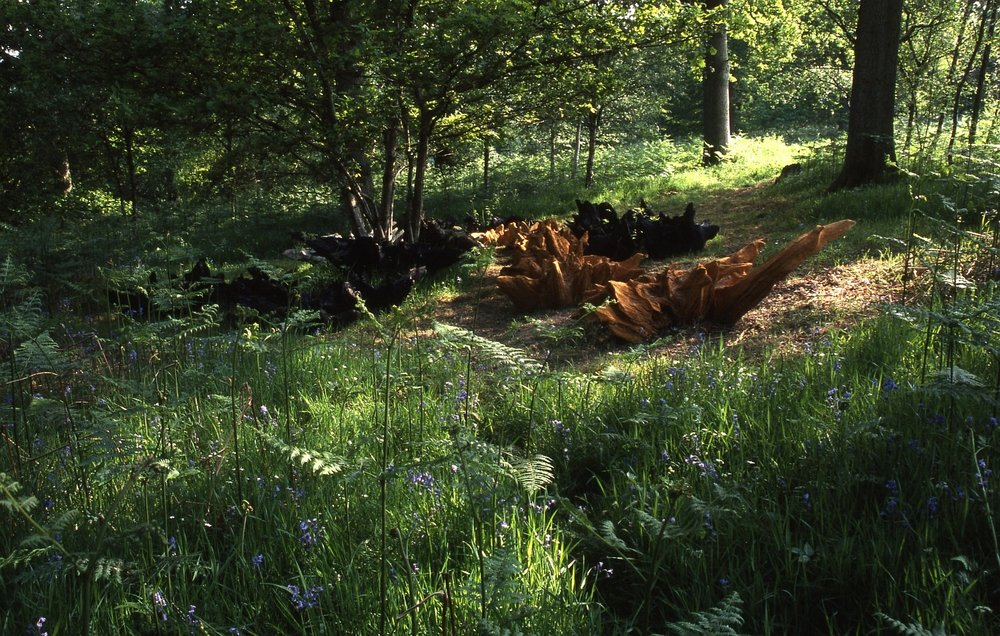 Phoenix Roots installation, Forest of Dean Sculpture Trail