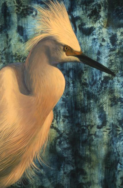 "Snowy Egret oil 18"" x 24"""
