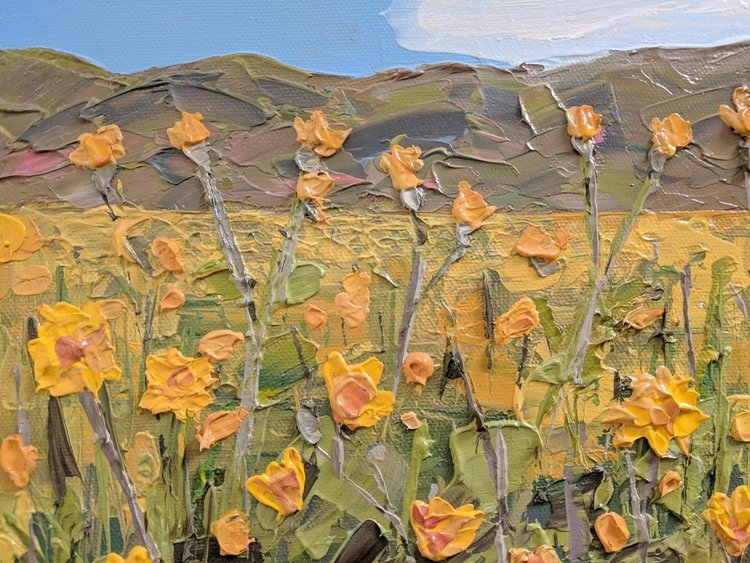 CALIFORNIA - A show dedicated to California's native flora and state parks.