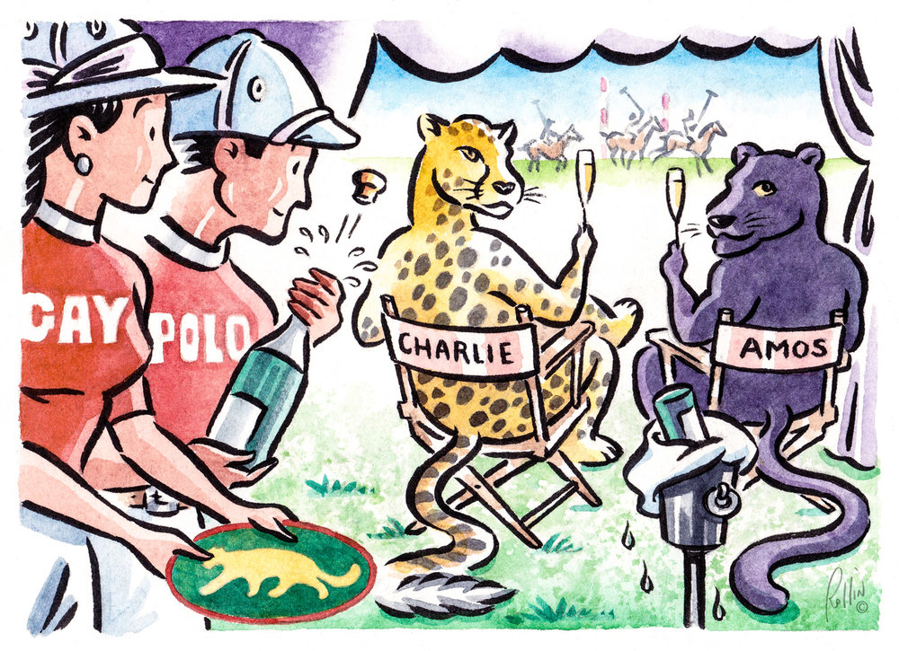 """Gay Polo Panther Ridge"