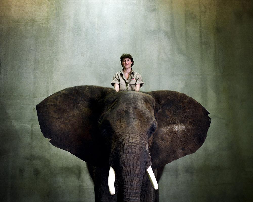 elephant_beth.jpg