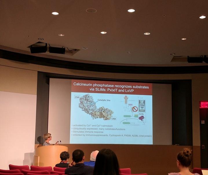 - Martha presents at the Stanford Bio-X Seed Grants Program Symposium.