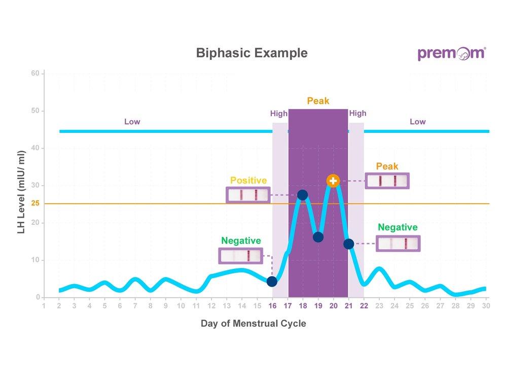 03 LH Level Parttern_biphasic.jpg