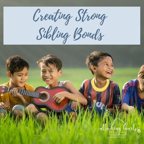 attaching hearts to home create sibling bonds attachment parenting attach hoemschool.jpg